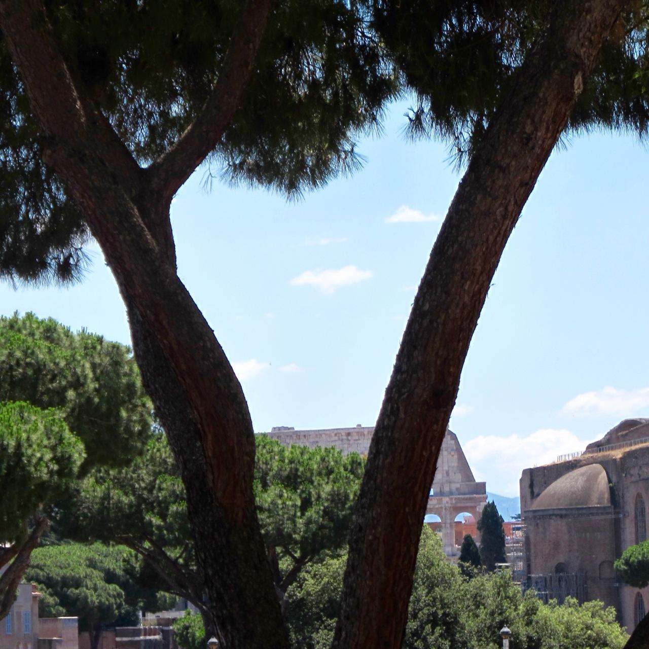 firstcolosseum.jpg